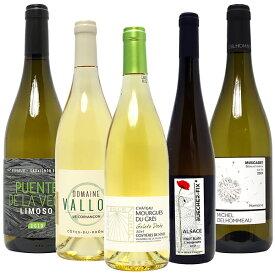【送料無料】オーガニックワイン 極上白5本セット ワインセット BIO ^W04I04SE^