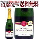 アウトレット 金賞 スパークリングワイン カヴァ ブリュット 瓶汚れ 750mlアシエンダ ...