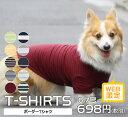 【Web限定】ボーダーTシャツ 6号・7号【在庫限り】【SALE】