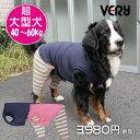犬 服 VERY ベリー 超大型犬 秋冬 ボーダーパンツ ペット 服 おしゃれ かわいい 犬服 秋冬 プチプラ 大型犬
