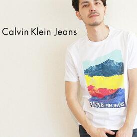 【限定クーポン配布!】【メール便可】カルバンクラインジーンズ Tシャツ CALVIN KLEIN JEANS 半袖 ホワイト アンディ・ウォーホル スタック マウンテン S/S ティー 41T0149 メンズ CK ブランド カジュアル アパレル コットン 綿 定番 人気 白