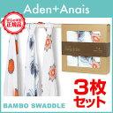 Aden-h_new