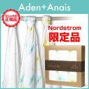 Aden-y_top2