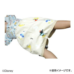 おねしょケット ディズニー 40×40cm SB-329【代引・同梱・ラッピング不可】