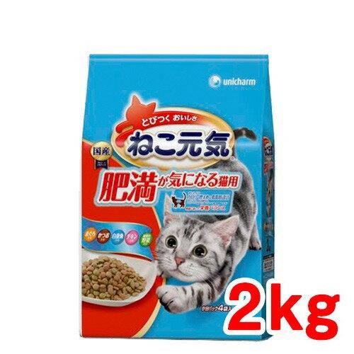 ねこ元気 肥満が気になる猫用 まぐろ・かつお・白身魚・チキン・緑黄色野菜入り 2kg 【ねこ元気】【キャットフード(肥満猫・ダイエット用)】