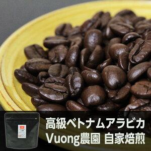 【自家焙煎コーヒー】ベトナムアラビカ 400g ブン農園シングルオリジン ベトナムコーヒー