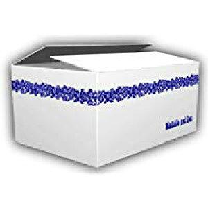 デザインダンボール ハワイアン Lサイズ段ボール/収納用品/梱包資材/ギフト用