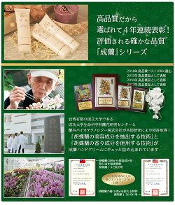 台湾国家プロジェクト