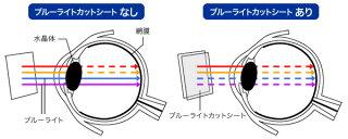 VAIOSX12/ProPJ用保護フィルムOverLayEyeProtectorforVAIOSX12/VAIOProPJ液晶保護目にやさしいブルーライトカットバイオプロ12インチ