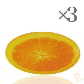 [3枚SET] フルーツプレート ≪オレンジ≫ (FRUIT PLATE watermelon 輪切り 果物 インスタ映え 夏 盛り合わせ 皿)