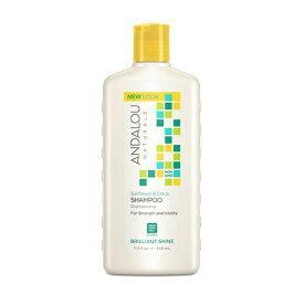 アンダルー・ナチュラルズ(ANDALOU NATURALS) SCブリリアントシャインシャンプー 340mlフルーツ幹細胞エキスにボタニカル成分をブレンド。高い保湿力があるマルメロとビタミンが豊富な植物オイルブレンドが美しく輝くツヤ髪に。シトラスベースの香りのシャンプー