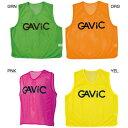 Gavic 1291