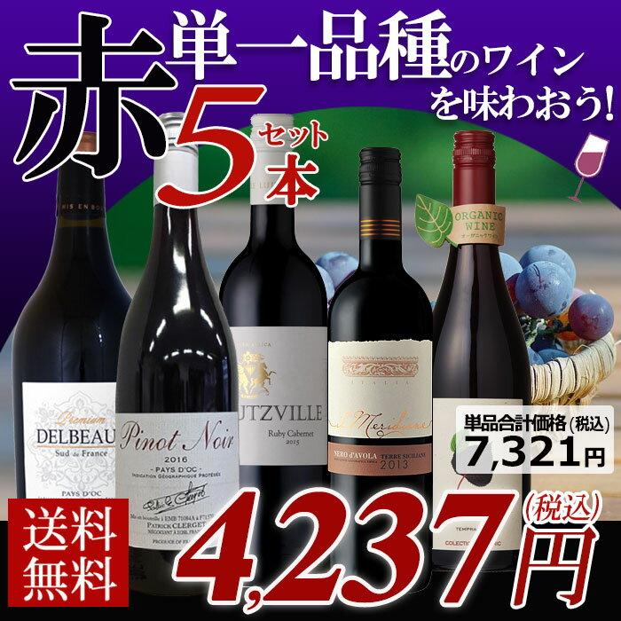 【送料無料】単一品種を楽しもう 赤ワイン 5本セット 辛口 ワイン ワインセット 赤 メダルワイン 金賞 イタリア スペイン 南アフリカ フランス