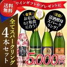 【送料無料】ワインギフトフランス産スパークリングワイン4本セット辛口/甘口/スパークリングワイン/フランスワイン/ビオワイン【party】