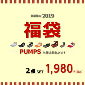 靴種が選べる福袋 パンプス2足セット サイズいろいろ レディース 靴 ぺたんこ 歩きやすい 走れる フラット 結婚式 ストラップ ローヒール