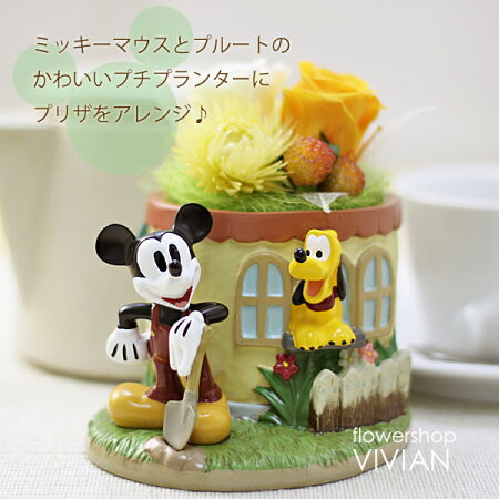 【送料無料】ミッキーマウスプルートディズニープリザーブドフラワー花屋