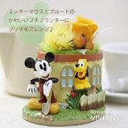 プリザーブドフラワー/ディズニー/ミッキーマウス