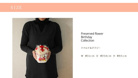 【送料無料】バースデードナルド&デイジーディズニー陶器プリザーブドフラワー花屋