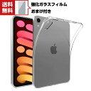 送料無料 Apple iPad mini 6 2021モデル タブレットケース アップル アイパッド プロ CASE 薄型 クリア 傷やほこりか…