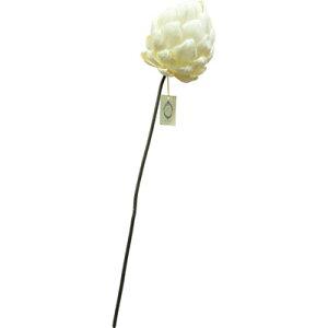 ソラフラワーステム Sola Flower Stem Artichoke アーティチョーク L 24011001