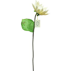 ソラフラワーステム Sola Flower Stem サンフラワー Sun Flower 24011061
