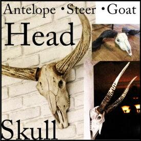 5%割引楽天ラクーポンが使える/ディスプレー/店舗什器/割引/送料無料/スカル/S355-72/Goat head /ゴートヘッド/S355-71/Steer head/スティアヘッド/ S355-70/Antelope head/アンテロープヘッド/壁掛け/頭蓋骨/DULTON/ダルトン/父の日