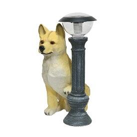 ソーラーライト ガーデンライト 玄関 置物 柴犬タロー