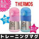 Thermos 004 a