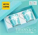 Tiffany-018-yoyaku8