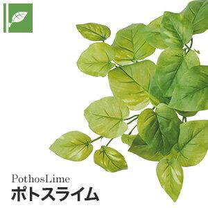 【壁面緑化】マグネット式壁面装飾 ぴたっとグリーン 人工植栽 ポトスライム__pg-001