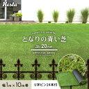 【人工芝】RESTAオリジナル 気楽にはじめるリアル人工芝 20mm となりの青い芝 1×10m U字ピン24本付き 【送料無料】__…