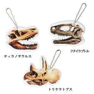 ダイナソーキーホルダー 恐竜 アクセサリー【日本製】 かっこいい トリケラトプス フクイラプトル ティラノサウルス 雑貨 大きめサイズ リアル Dinosaur Key holder