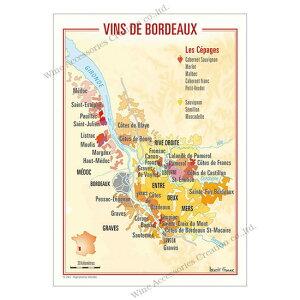 フランス製ワイン ポストカード[ボルドー]10枚セット