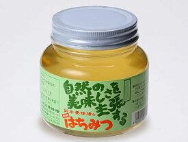 【送料無料】鈴木養蜂場 自然の美味しさを主張するはちみつ【菜の花蜜】(450g) / 蜂蜜 お取り寄せ 通販 お土産 お祝い プレゼント ギフト ホワイトデー おすすめ /