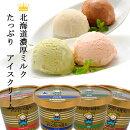スイーツべつかいのアイスクリーム屋さん12個入りA-07【送料込み】