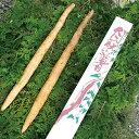 【送料無料】茨城県 笠間市 自然薯(約800g)極上とろろ / レジスタントスターチ 長芋 長いも 長イモ やまのいも 健康…
