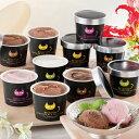 アイス ギフト 濃厚本場チョコレートアイス イーペルの猫祭り ベルギーチョコレートグラシエ(アイス職人)10個入 AH-…