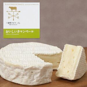 【送料無料】チーズ おいしいカマンベール(250g)  / お取り寄せ 通販 お土産 お祝い プレゼント ギフト ホワイトデー おすすめ /