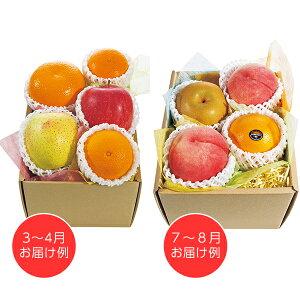 ホシフルーツ おまかせ旬のフルーツBOX B  【送料無料】  / フルーツ 果物 くだもの お取り寄せ 通販 お土産 お祝い プレゼント ギフト ホワイトデー おすすめ /