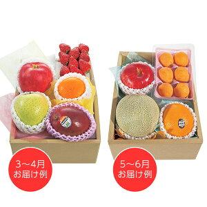 ホシフルーツ おまかせ旬のフルーツBOX D  【送料無料】  / フルーツ 果物 くだもの お取り寄せ 通販 お土産 お祝い プレゼント ギフト ホワイトデー おすすめ /