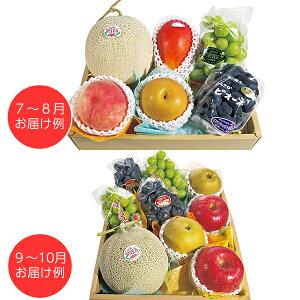 ホシフルーツ おまかせ旬のフルーツBOX G  【送料無料】  / フルーツ 果物 くだもの お取り寄せ 通販 お土産 お祝い プレゼント ギフト ホワイトデー おすすめ /