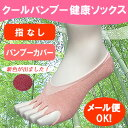 パンプス用靴下 消臭・抗菌ソックス(かかと付き) 【ピュア・クールバンブー】