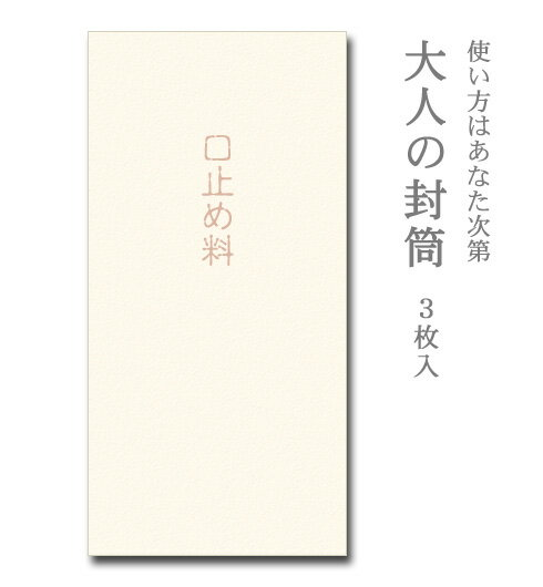 大人の封筒 口止め料 3枚入【ぽち袋/ポチ袋 大】【お年玉袋/正月】