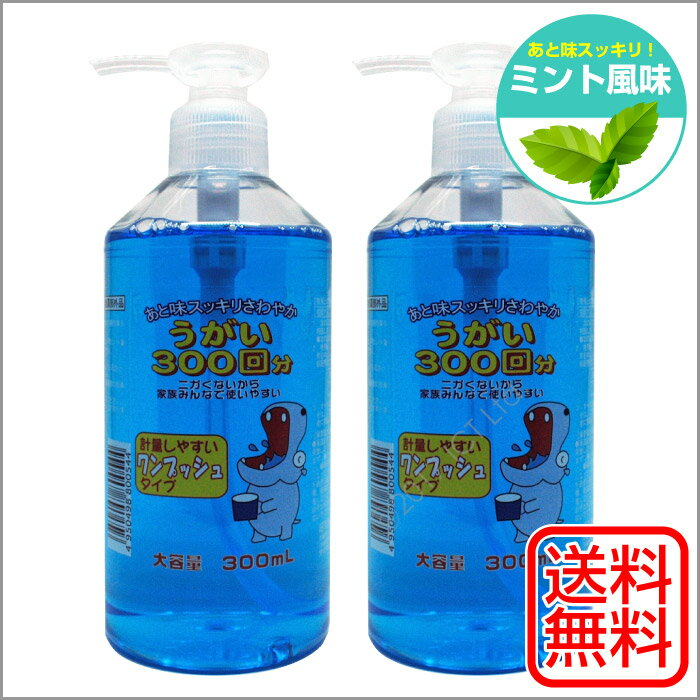 イーレス うがい薬 300mL×2個セット ミント味 指定医薬部外品 日本製