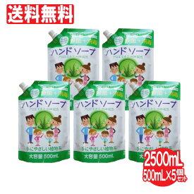 ハンドソープ 薬用ハンドソープ詰め替え用 5個セット 大容量 2500mL(500mL×5個)洗浄 殺菌 消毒 保湿 アロエエキス 日本製 送料無料 携帯
