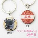 【迷子札】【ドッグタグ】犬、猫、ペットの写真入り迷子札【メール便可】【名入れ】