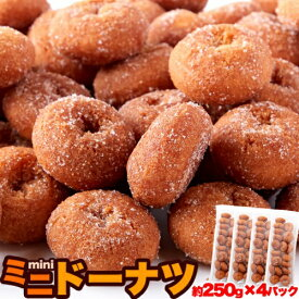 ミニドーナツ1kg(250g×4袋) みんな大好き!一口サイズのドーナツが夢の食べ放題級!!