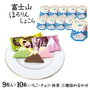 【送料無料】【富士山 お土産】富士山ほろりんしょこら9枚×10箱セット ほろりんショコラ 世界文化遺産 洋菓子 クッキー サブレ 景品 詰合せ プレゼント 贈り物 (いちご味3枚、チョコ味3