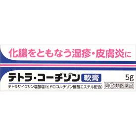 【第(2)類医薬品】テトラ・コーチゾン軟膏5g