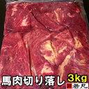 馬肉切り落し 3kg ( 1kg ×3パック) 板状だから冷凍庫にスッキリ収納 馬ガッキ煮 すじ煮込み すじ スジ ペット馬…